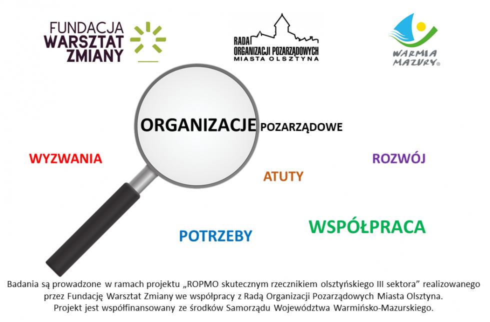 Olsztyńska Rada sektor bada